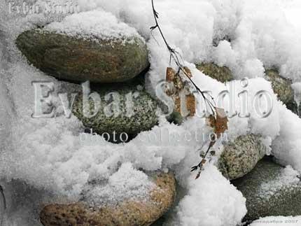 Березовая ветвь на камнях