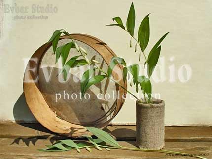 Деревенские зарисовки, фото обои фон заставка картинка тема рабочего стола