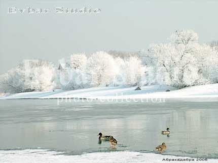 Зима на Москве - реке с утками, фото обои фон заставка картинка тема рабочего стола