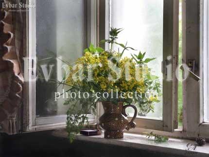 Цветы на окне, фото обои фон заставка картинка тема рабочего стола