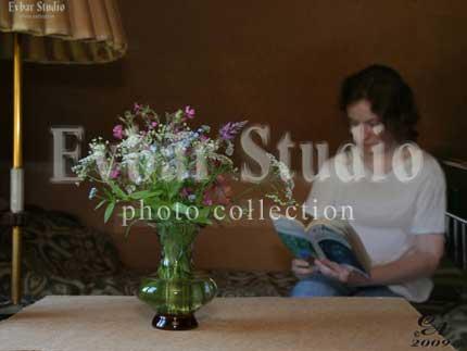 Девушка, читающая книгу