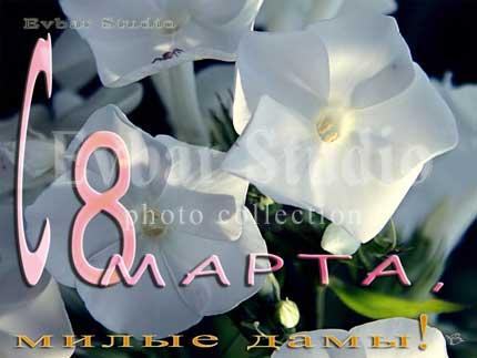 С 8 Марта, милые дамы