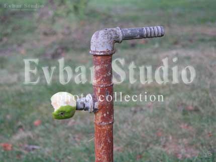 Водопровод, фото обои фон заставка картинка тема рабочего стола
