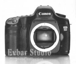 canon-5d.jpg